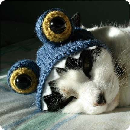 crochet pattern monster pet costume by xmoonbloom on Etsy