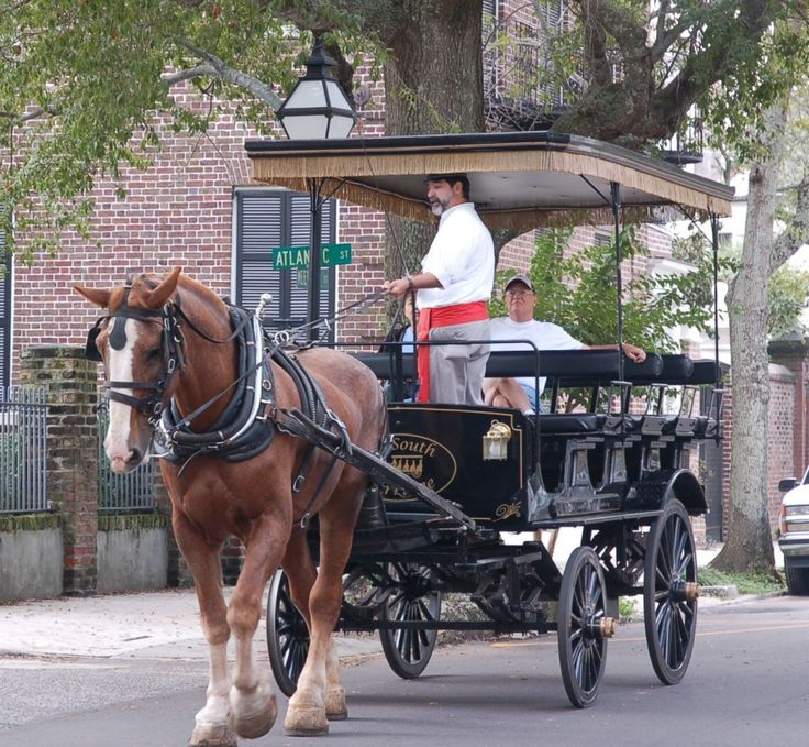 55 best  u0026quot carriage  u0026 sleigh rides images on pinterest