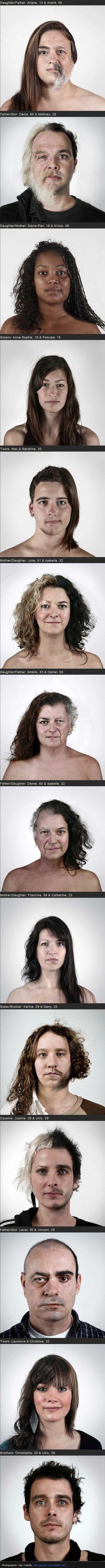 Genetics. These are terrific!