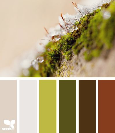 Frosted Moss. Using colours inspired by nature will always result in the perfect palette.