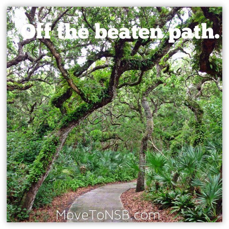 Gorgeous walking path in Sea Woods - New Smyrna Beach, Florida