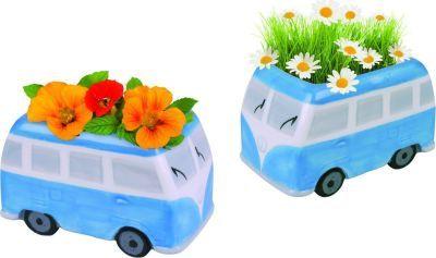 Loot.co.za - Kitchen & Dining: Paris Garden Gift Pots Flower Power Bus (Daisy Flowers) | Food