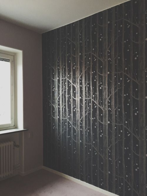 bergtagen:  My bedroom turned into a silver forest.