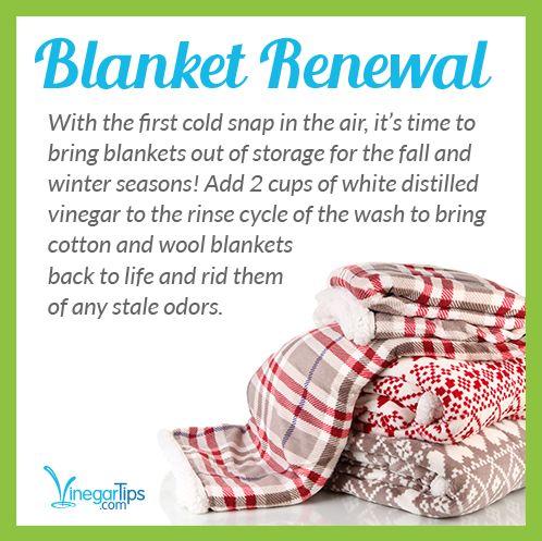 Blanket Renewal
