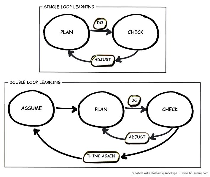 Single-loop and double-loop models in research on decision