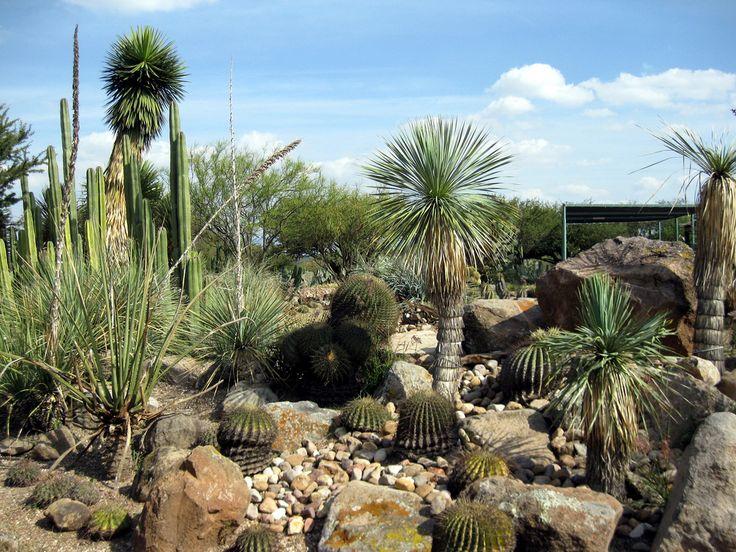 Datocurioso en san miguel de allende se encuentra el for 7 jardines guanajuato