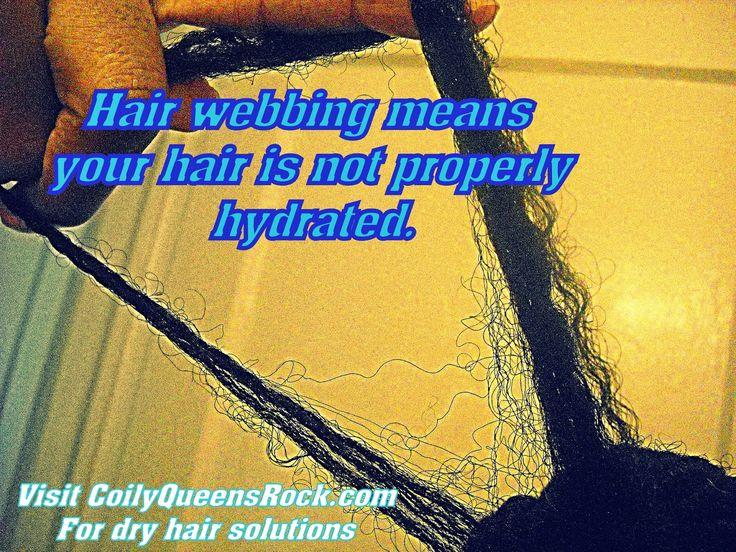 Best 25 Natural Hair Journey Ideas On Pinterest Afro
