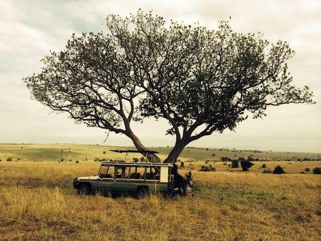 appunti novalis: I 50 parchi naturali più belli del mondo #19/25