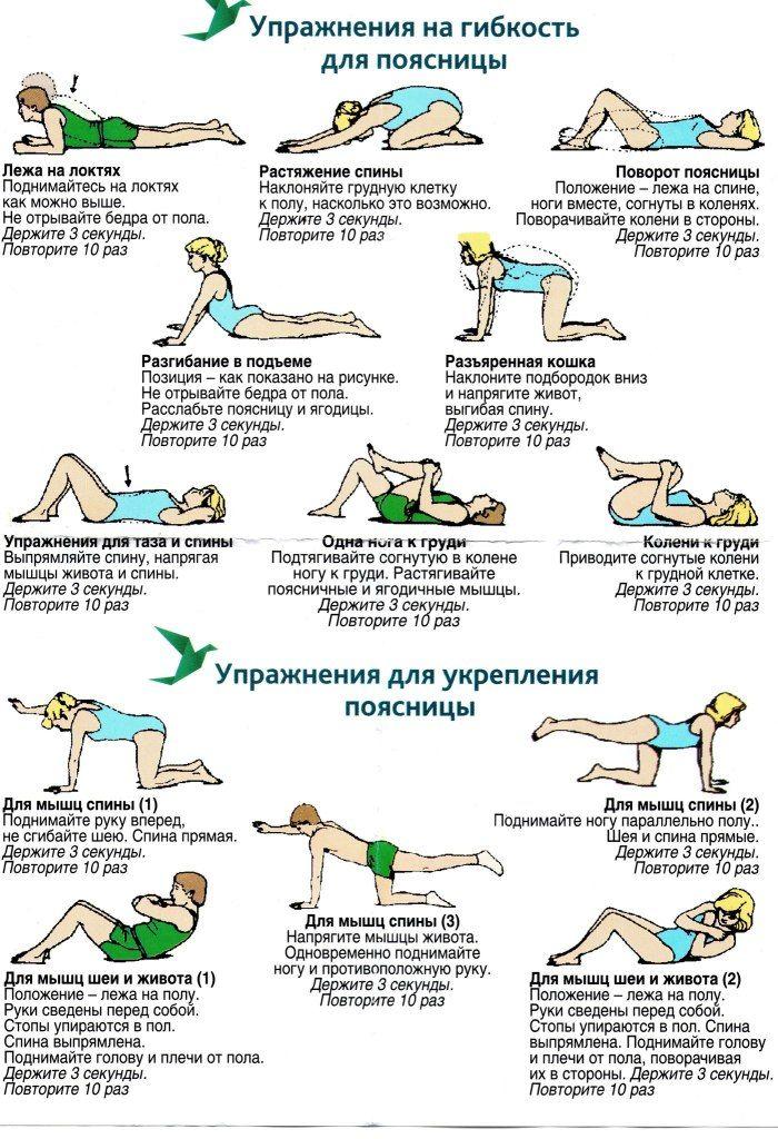 Упражнения для спины: развиваем гибкость, укрепляем мышцы, снимаем боль