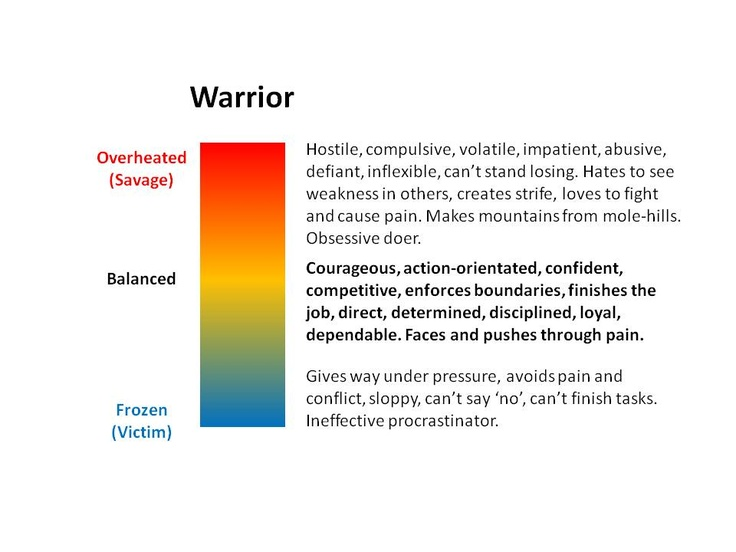 The Warrior Archetype: mature, overheated and frozen ...