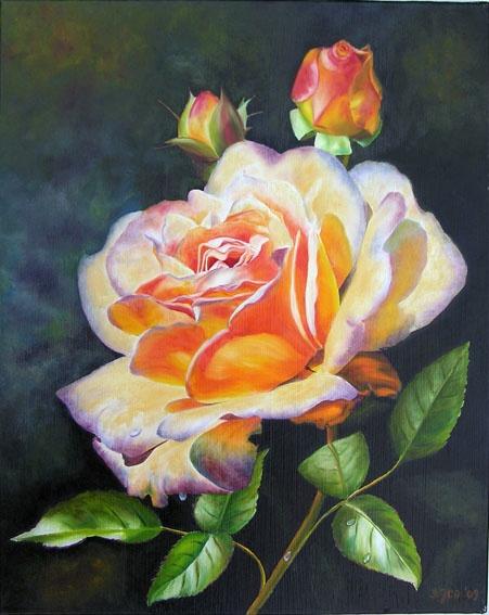 Rose Ghislaine de Feligonde II - oil