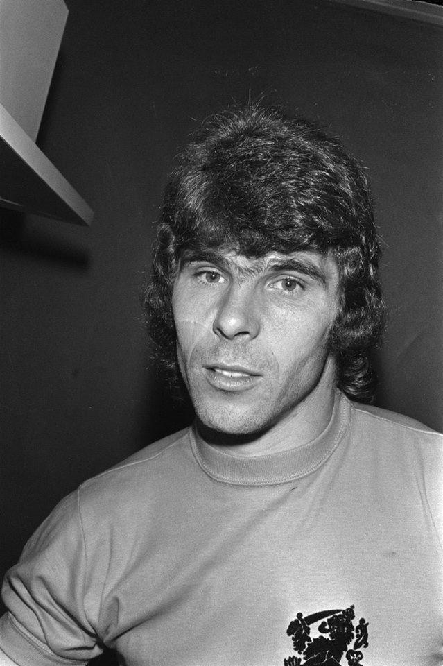 Willem van Hanegem, WK 1974