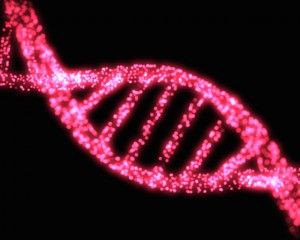 The Morphogenetic Field & The Future of DNA ~ http://www.wakingtimes.com/2014/07/21/morphogenetic-field-future-of-dna/