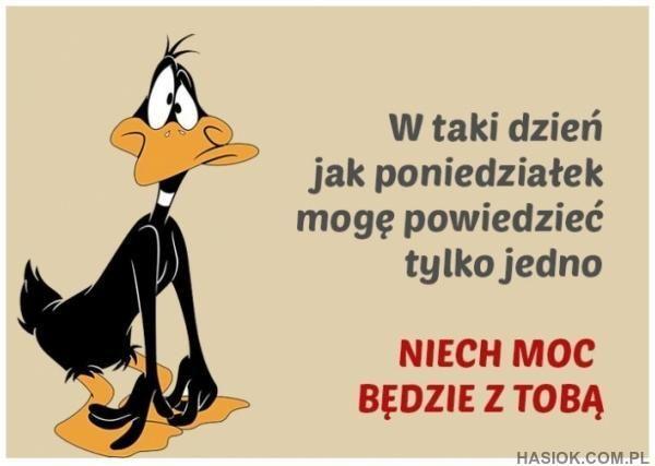 W taki dzień jak Poniedziałek - http://hasiok.com.pl/952/W-taki-dzien-jak-Poniedzialek