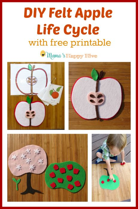 preschool apple crafts 198 best images about apple unit study on 2738
