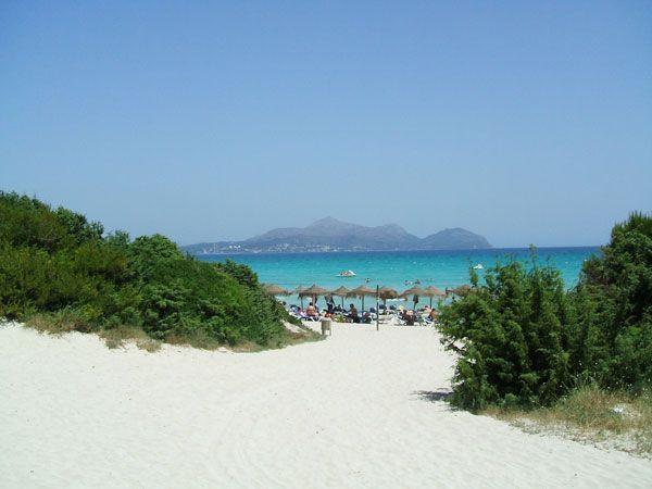 What to do in Mallorca playa de Muro