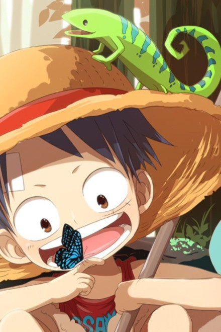 Monkey D. Luffy. One Piece ♡ this is ,you screensaver, and I will never change it