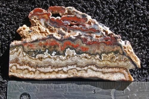 Rock-slab-MEXICAN-CRAZY-LACE-agate-splendid-colors-intricate-patternl