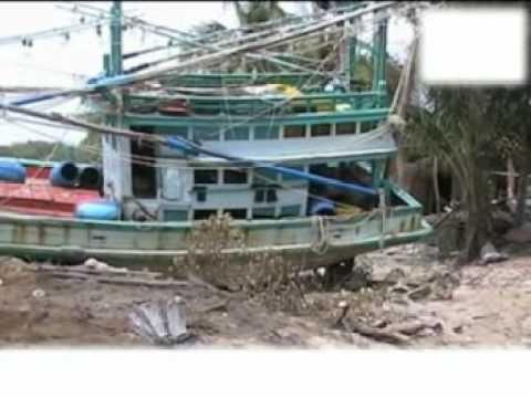 Il dopo tsunami