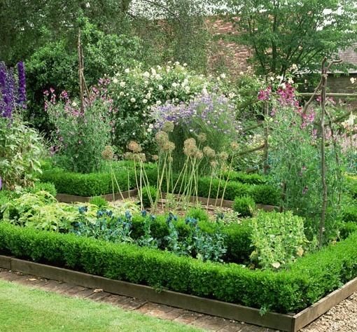 raise the bar raised beds are the perfect solution for a garden space with poor drainage