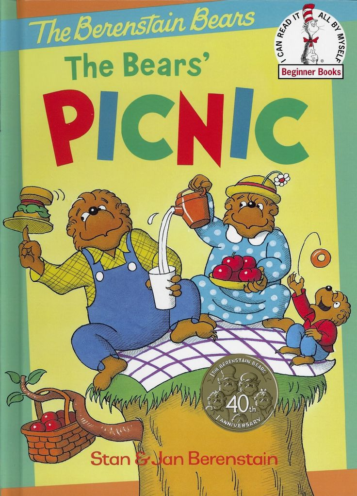 Book 3 The Bears Picnic