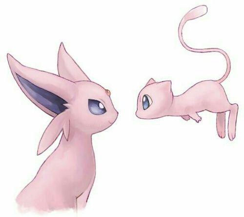 mew pokemon and espeon bild  mew and mewtwo pokemon