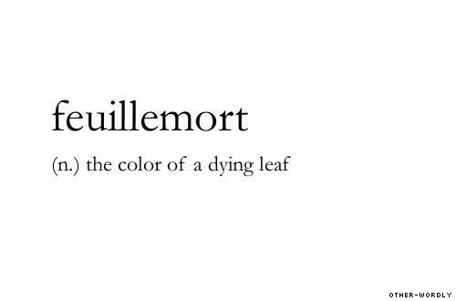 It's actually an adjective, but it does mean having the color of a dying or faded leaf.