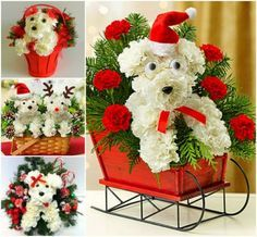 Puppy Christmas Bouquets