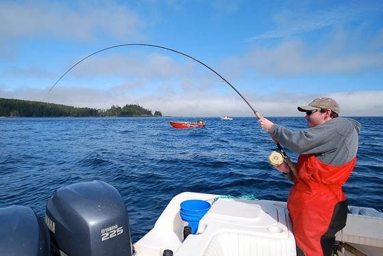 Langara Island Salmon Fishing Report: August 17, 2012