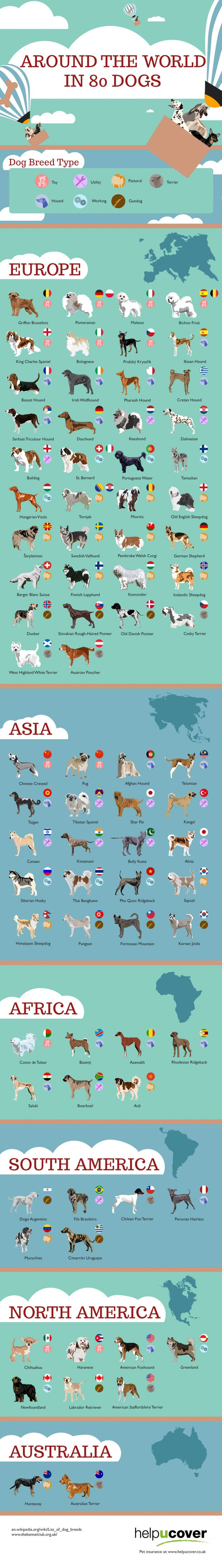 La vuelta al mundo en 80 razas de perros
