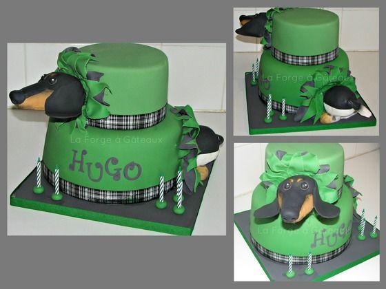 Dachshund digs through cake