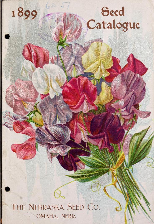 1899 Nebraska Seed Co catalog with sweet pea cover