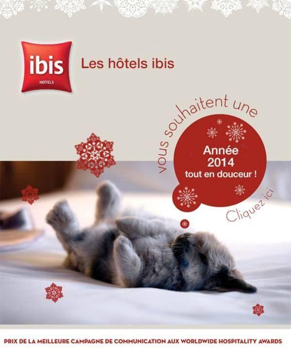 L'ibis Lyon Est Chaponnay vous souhaite de joyeuses fêtes 2014 #ibis #accor #joyeusesfetes #bonneannee #fetes