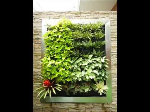 Como hacer un jardín vertical DECORAMBIENTES DEL VALLE