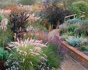 Marchants Hardy Plants (1001 tuinen) - Laughton  Open woensdag - zaterdag 09:30 - 5:30 uur.