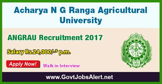 ANGRAU Recruitment 2017 – Walk in Interview for Teaching Associates and Assistants Posts, Salary Rs.24,000/- : Apply Now !!!  The  Acharya N G Ranga Agricultural University - ANGRAU Recruitment 2017 has released an official employment notification inviting interested and eligible candidates to apply for the positions of Teaching Associates and Teaching Assistants. The interested candidates have to attend the walk in interview to apply to the post in the prescribed format