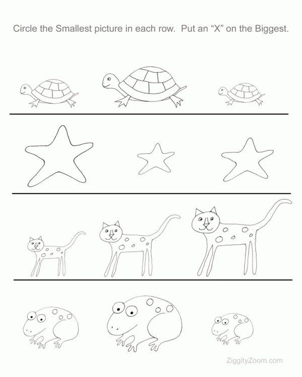 free printable worksheet for preschoolers littlest or biggest - Preschool Pages Free