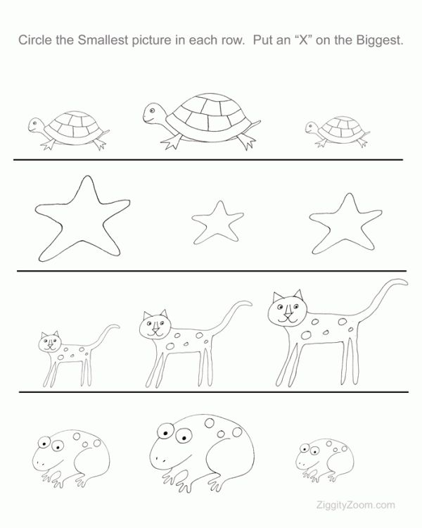 Printables Preschoolers Worksheets 1000 ideas about preschool worksheets on pinterest biggest and littlest worksheet ziggity zoom