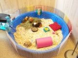 Adorable and cheap guinea pig cage. Small children pool, animal fence from pet smart, and you can fill in the rest :) My baby girls would adore this if we had the room.
