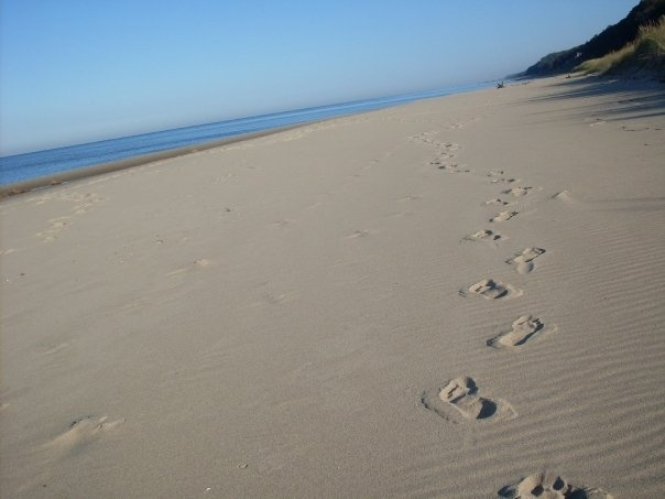 Lake Michigan - footsteps, soon to be mine: Lake Michigan, Lakes Michigan, Michigan Mi Beautiful