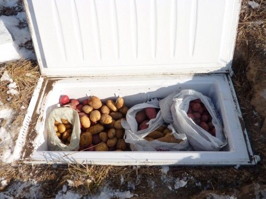 How To Build a Root Cellar From Recycled Materials. I could take the veggies from the ground to the cellar right in the garden area :)