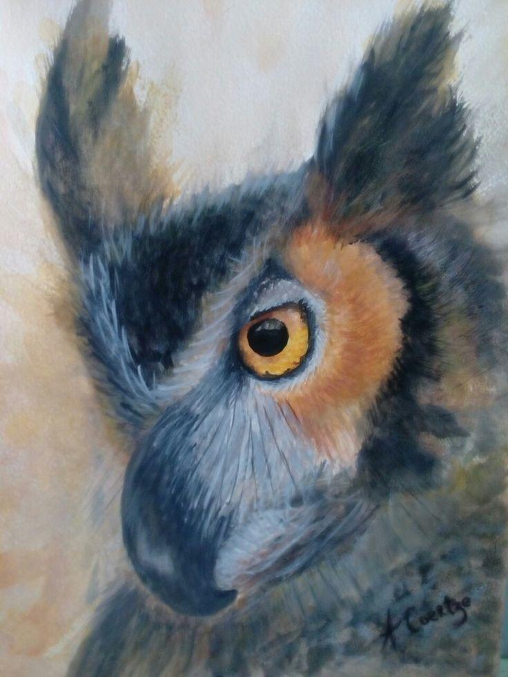 Owl....watercolor.Amanda Coertze Jun '17