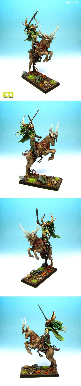 Wood Elf Champion Glade Rider. #woodelves #warhammer #miniaturepainting