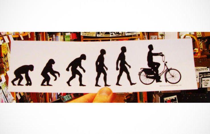 Evolution Choppa