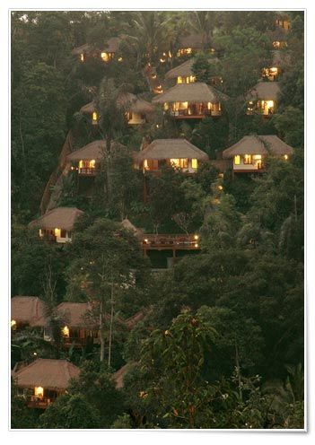 In Nandini Bali... any one want to go?