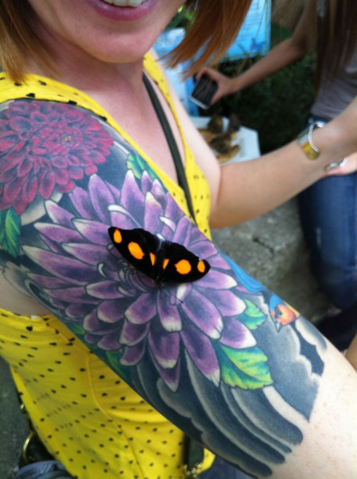 Tattoo tricked a butterfly.  I've had that happen too, unfortunately it was a bee not a butterfly!