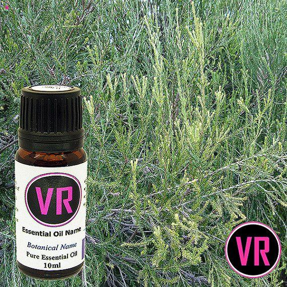 10ml Rosalina  Melaleuca ericifolia 100 Pure by VandaRoseAroma