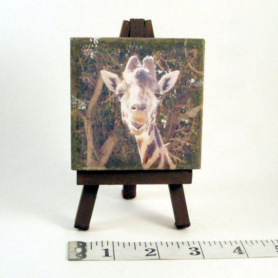 Giraffe decor giclee on canvas giraffe art photo wildlife decor wildlife art print giraffe small canvas mini canvas art
