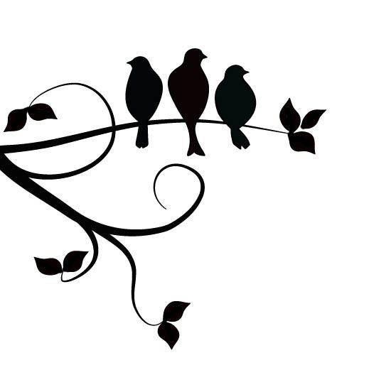 3 little black birds