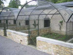Restored Aviaries